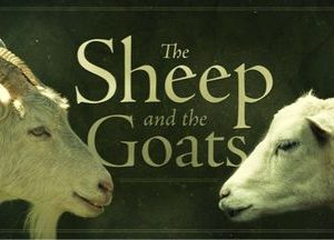 Wednesday@Woodland, Matthew 25:31-46, The Sheep and Goats