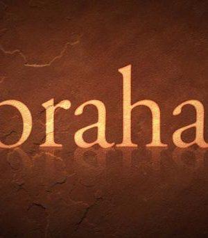 Wednesday @ Woodland, Romans 4, The Promise of Abraham